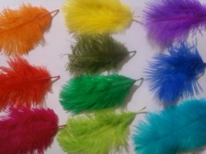 12 - Feather confetti – R15 per packet